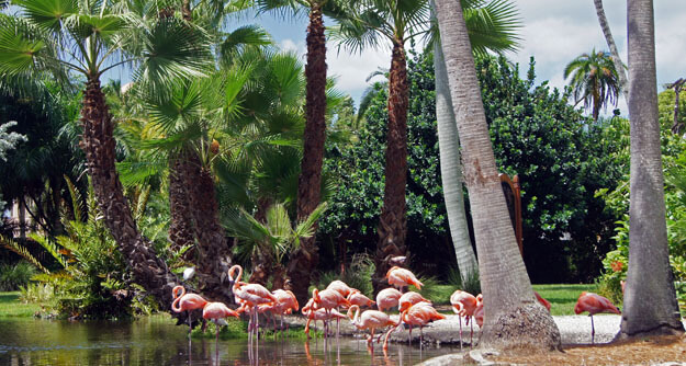 Places To Go In Southwest Florida