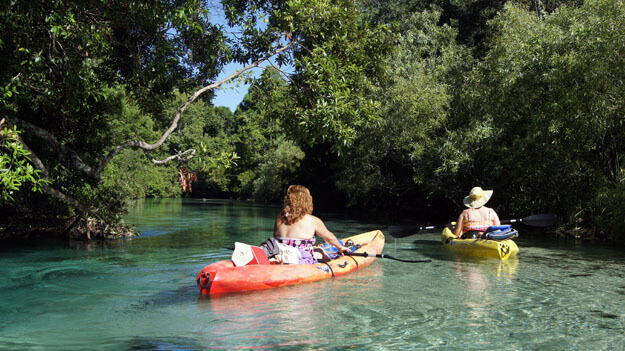 Photo of Weeki Wachee Springs State Park and River