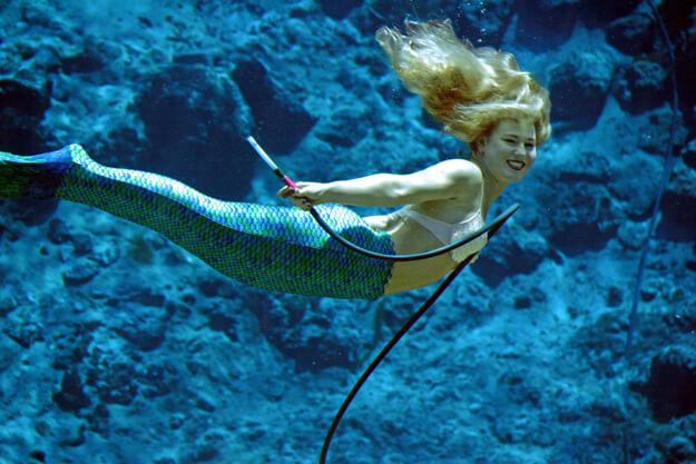 Photo of Mermaid at Weeki Wachee Springs
