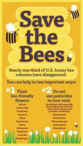Image with list of ways to Save the Bees