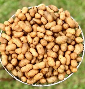 Photo of Peanuts from Lowry Farms in Jay Florida