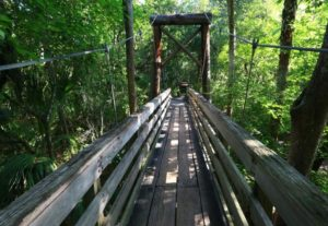Photo of Hillsborough River State Park in Tama Florida