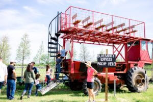 Photo of double decker tour at Southern Hill Farms