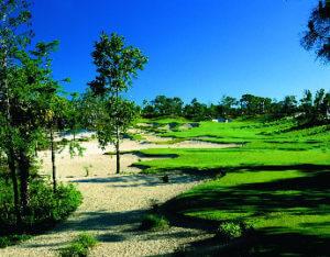 Calusa Pines Golf Club Naples