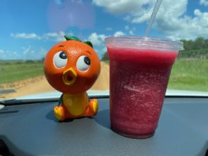 Florida Orange Bird and Blueberry Frozen Drink from Southern Hill Farms