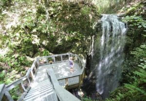 Photo of Falling Waters State Park