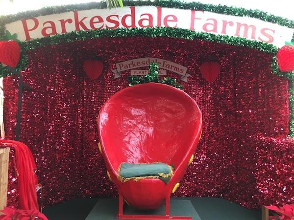 Foto del trono de la fresa en el mercado agrícola de Parkesdale en Plant City