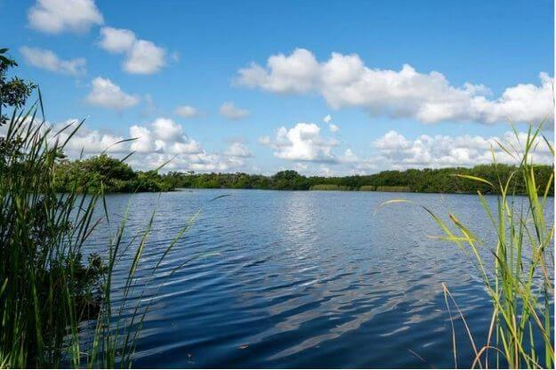 Photo of the Everglades National Park in Miami